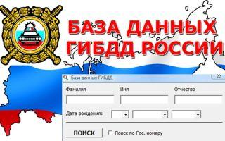 Как проверить водительское удостоверение на лишение онлайн?